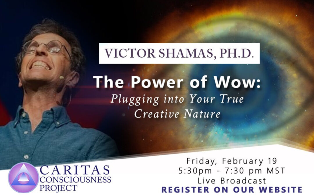 February 19  The Power of Wow: Plugging into Your True Creative Nature with Victor Shamas, Ph.D.