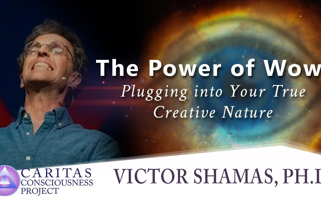 The Power of Wow: Plugging into Your True Creative Nature with Victor Shamas, Ph.D.